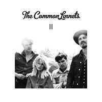 CD Cover: The Common Linnets - II