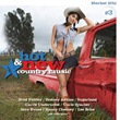 Various Artists - Hot & New Country Music, Volume 3
