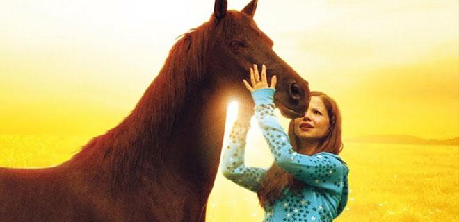 Der Pferdefilm und seine Renaissance